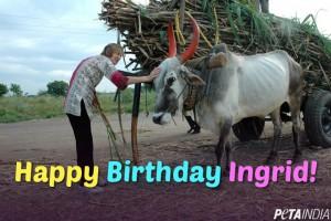 Happy Birthday Ingrid Newkirk