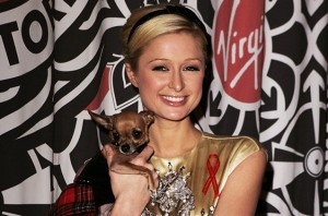Paris Hilton & Tinkerbell posing for picture