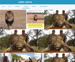 Animals worst nightmare, Walter Palmer, dentist, killer, lowlife, murderer