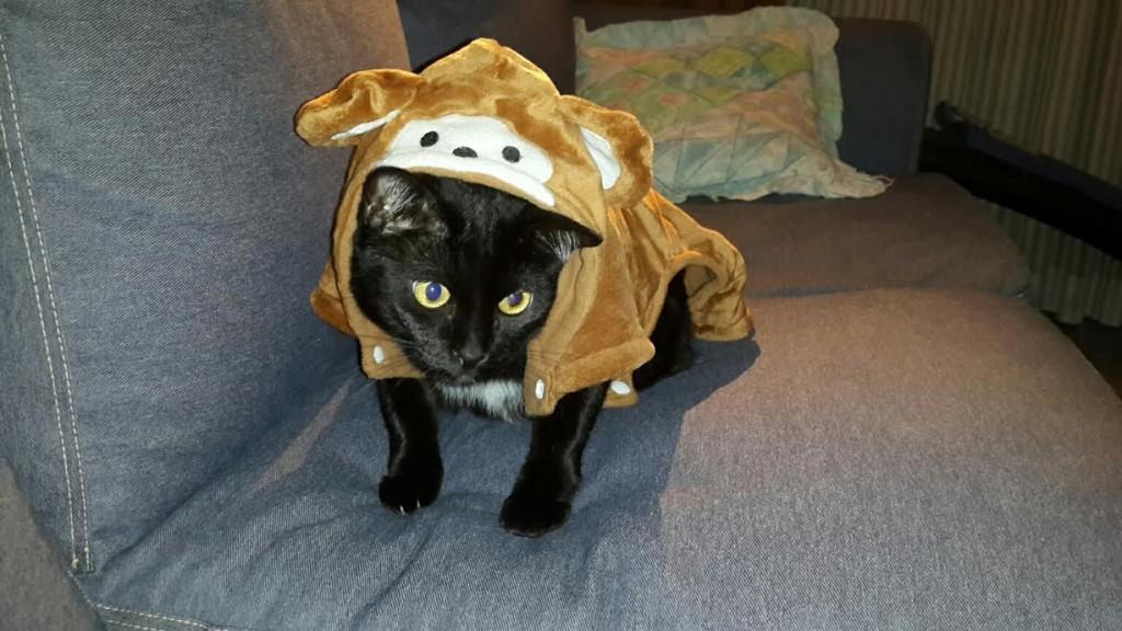 Monkey Blacky